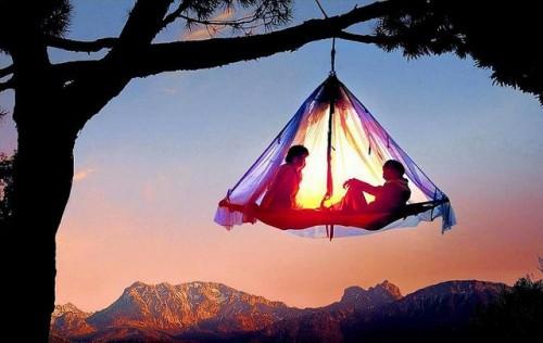 tree+camping+R